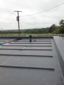 Sika Sarnafil Roof-AUG14